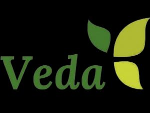 veda logo on black background